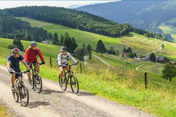 Best Bike Touring Routes In the US